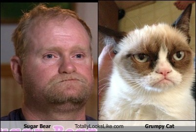 Sugar Bear Totally Looks Like Grumpy Cat