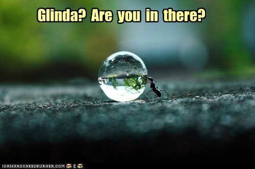 Glinda?  Are  you  in  there?