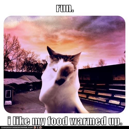 run.  i like my food warmed up.