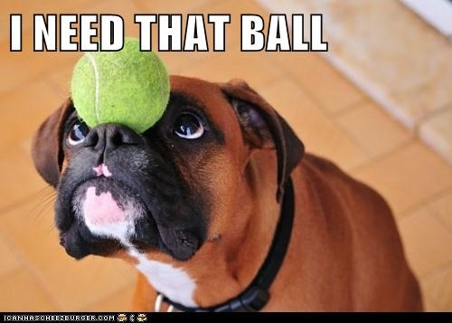 I NEED THAT BALL