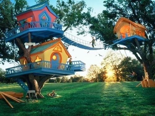 ONE Tree House? Amateur!