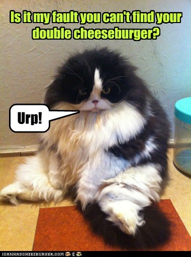 Is it my fault you can't find your double cheeseburger?