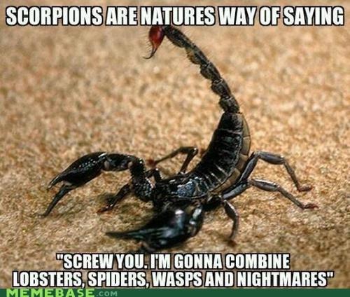 fear,wtf,acorpions