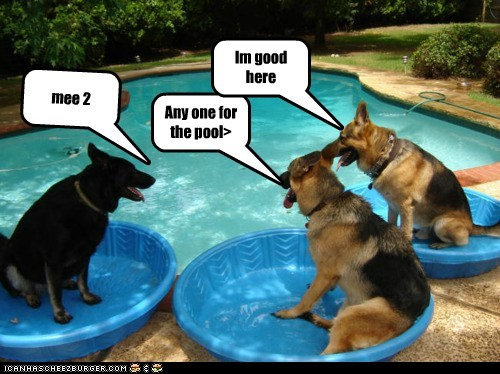 Any one for the pool>