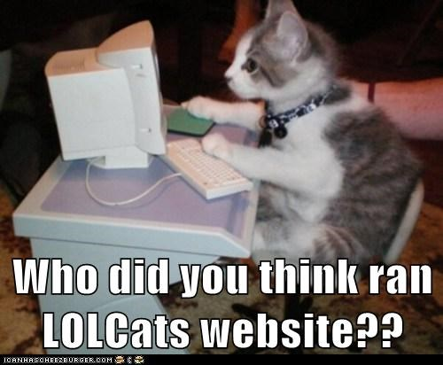 Who did you think ran LOLCats website??