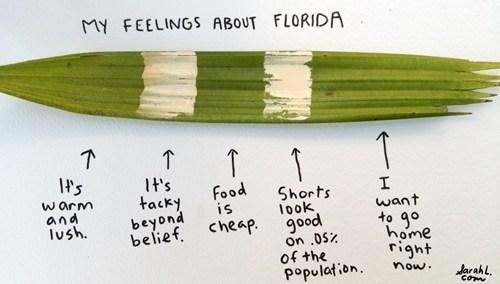 Florida Feels