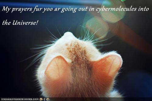 My prayers fur yoo ar going out in cybermolecules into the Universe!
