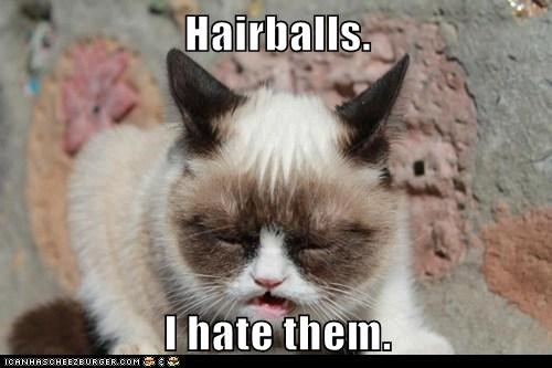 Hairballs.  I hate them.