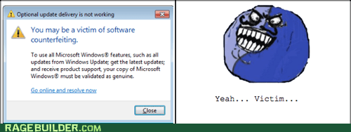 Software Counterfeiting