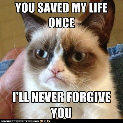 Angry Cat doesn't forgive you...