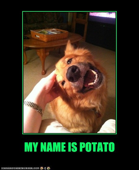 MY NAME IS POTATO