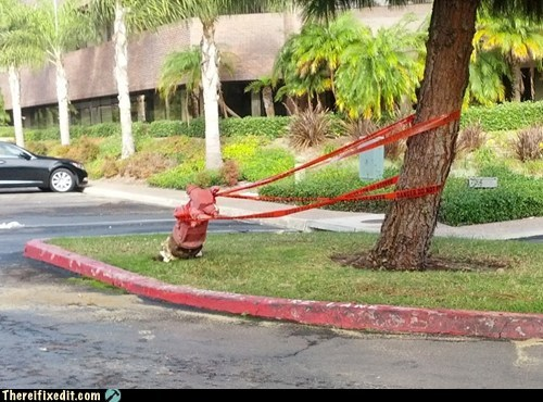 hydrant,danger,fire hydrant