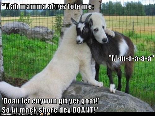 """Mah mamma alwez tole me: ""M-m-a-a-a-a"" 'Doan let enywun git yer goat!'                                                        So Ai maek shore dey DOANT!"""