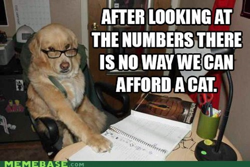Financial Advice Dog is Just Looking Out for You