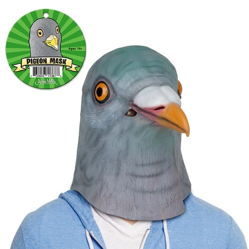 pigeon,mask,silly,bird,rubber,stupid