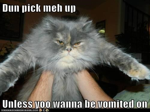 Dun pick meh up  Unless yoo wanna be vomited on