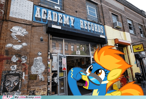 Fool on top of the hill,IRL,academy records,Memes