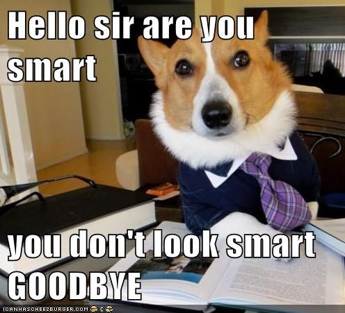 Hello sir are you smart  you don't look smart GOODBYE