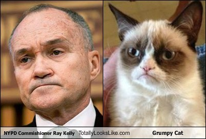 NYPD Commishioner Ray Kelly Totally Looks Like Grumpy Cat