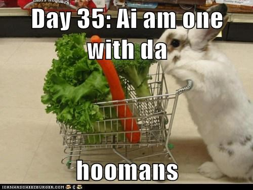 Day 35: Ai am one with da  hoomans