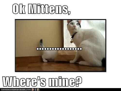 Ok Mittens,               .................. Where's mine?