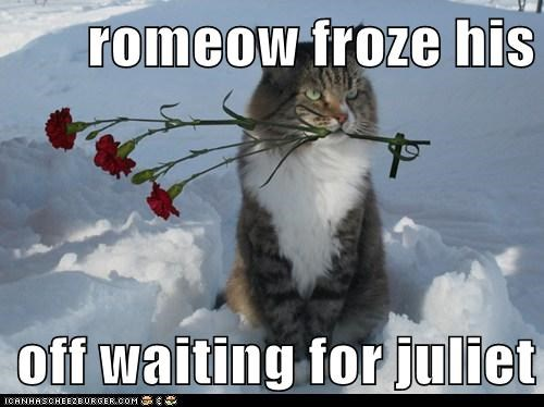 romeow froze his  off waiting for juliet