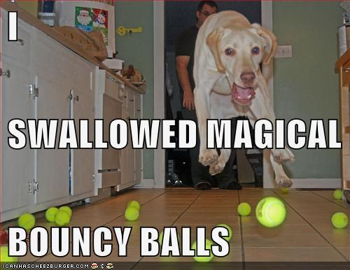 I SWALLOWED MAGICAL BOUNCY BALLS