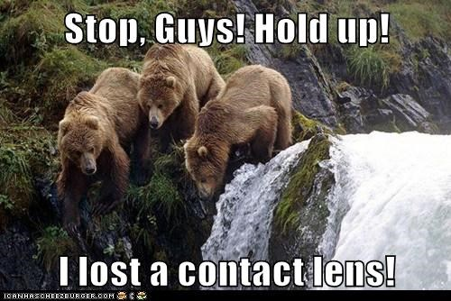 Stop, Guys! Hold up!   I lost a contact lens!