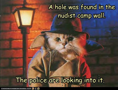 A hole was found in the nudist camp wall.