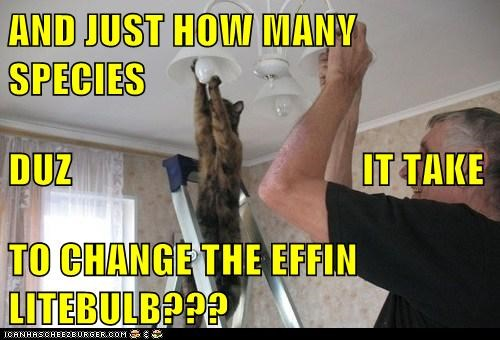 AND JUST HOW MANY SPECIES DUZ                                    IT TAKE TO CHANGE THE EFFIN LITEBULB???