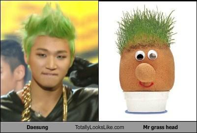 hair,green,daesung,mr grass head,TLL