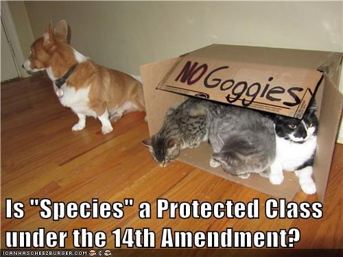 "Is ""Species"" a Protected Class under the 14th Amendment?"