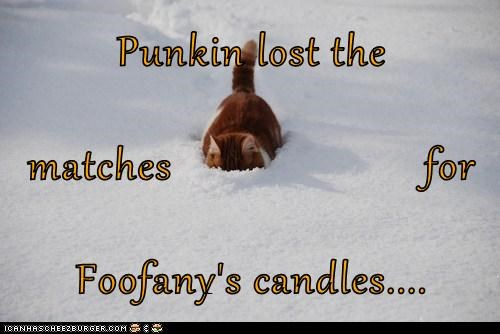 Punkin lost the matches                       for  Foofany's candles....