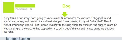 Dog gets revenge