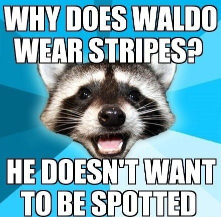 spotted,pattern,Lame Pun Coon,stripes,waldo,double meaning
