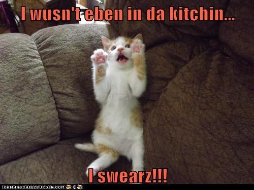 I wusn't eben in da kitchin...  I swearz!!!