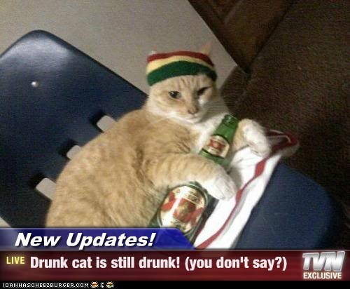 New Updates! - Drunk cat is still drunk! (you don't say?)