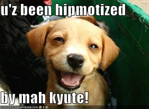 u'z been hipmotized  by mah kyute!