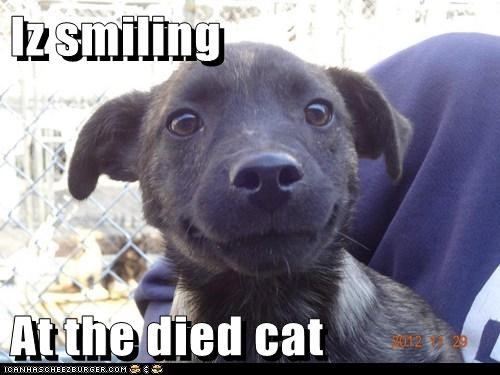 Iz smiling  At the died cat