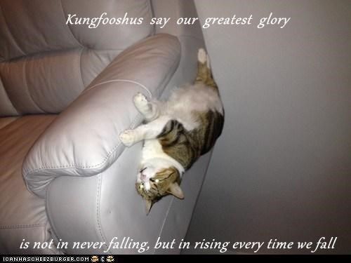 Kungfooshus  say  our  greatest  glory  is not in never falling, but in rising every time we fall