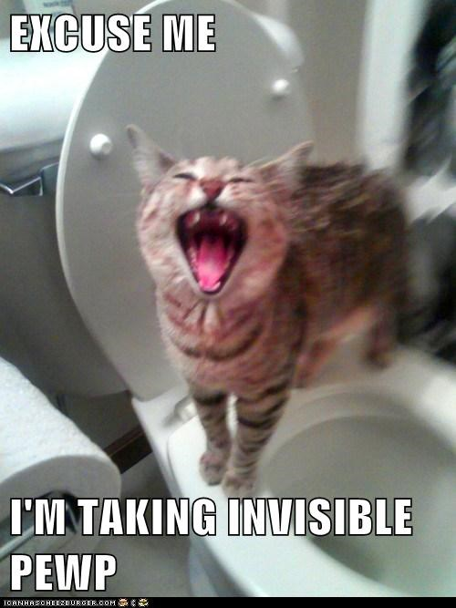EXCUSE ME  I'M TAKING INVISIBLE PEWP