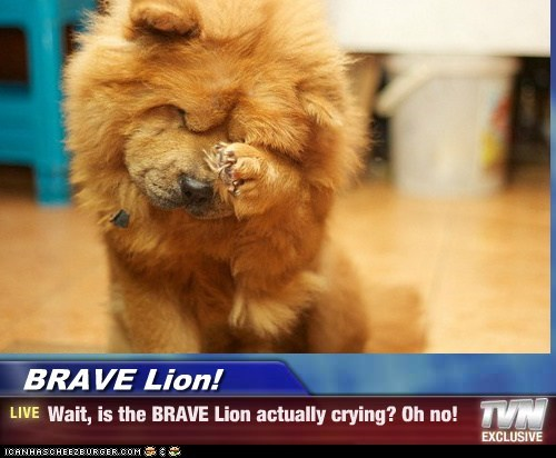 BRAVE Lion! - Wait, is the BRAVE Lion actually crying? Oh no!