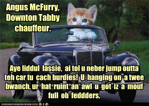 Angus McFurry, Downton Tabby chauffeur.