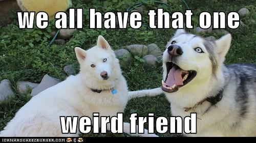 we all have that one   weird friend