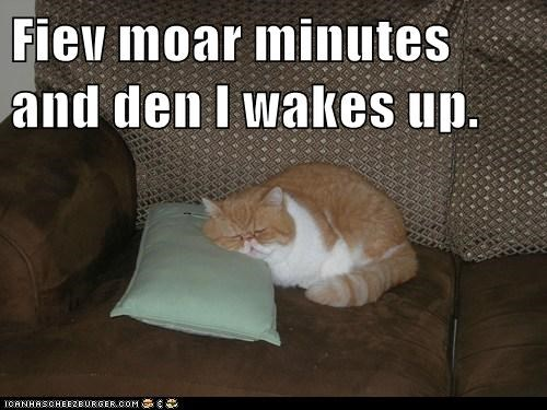 Fiev moar minutes and den I wakes up.