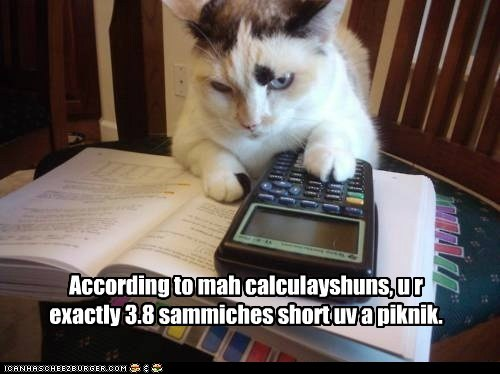 Calculating kitteh is sarcastic.