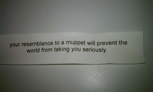 fortune cookie,wisdom,muppet,harsh,fail nation,g rated