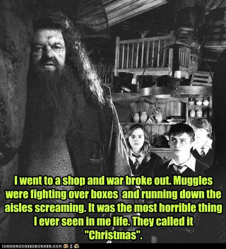 "I went to a shop and war broke out. Muggles were fighting over boxes  and running down the aisles screaming. It was the most horrible thing I ever seen in me life. They called it ""Christmas""."