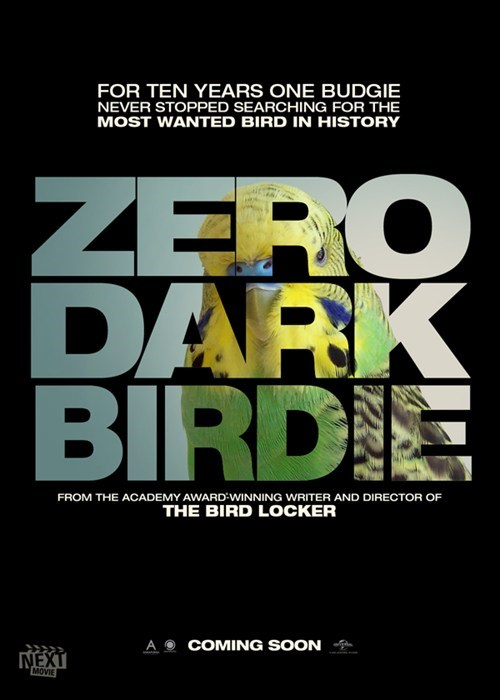 parakeet,birds,best picture,academy awards,budgie,oscars,zero dark thirty