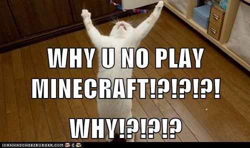 WHY U NO PLAY MINECRAFT!?!?!?! WHY!?!?!?